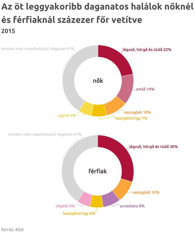 emlőrák Törökországban papillomavírus nemzetség