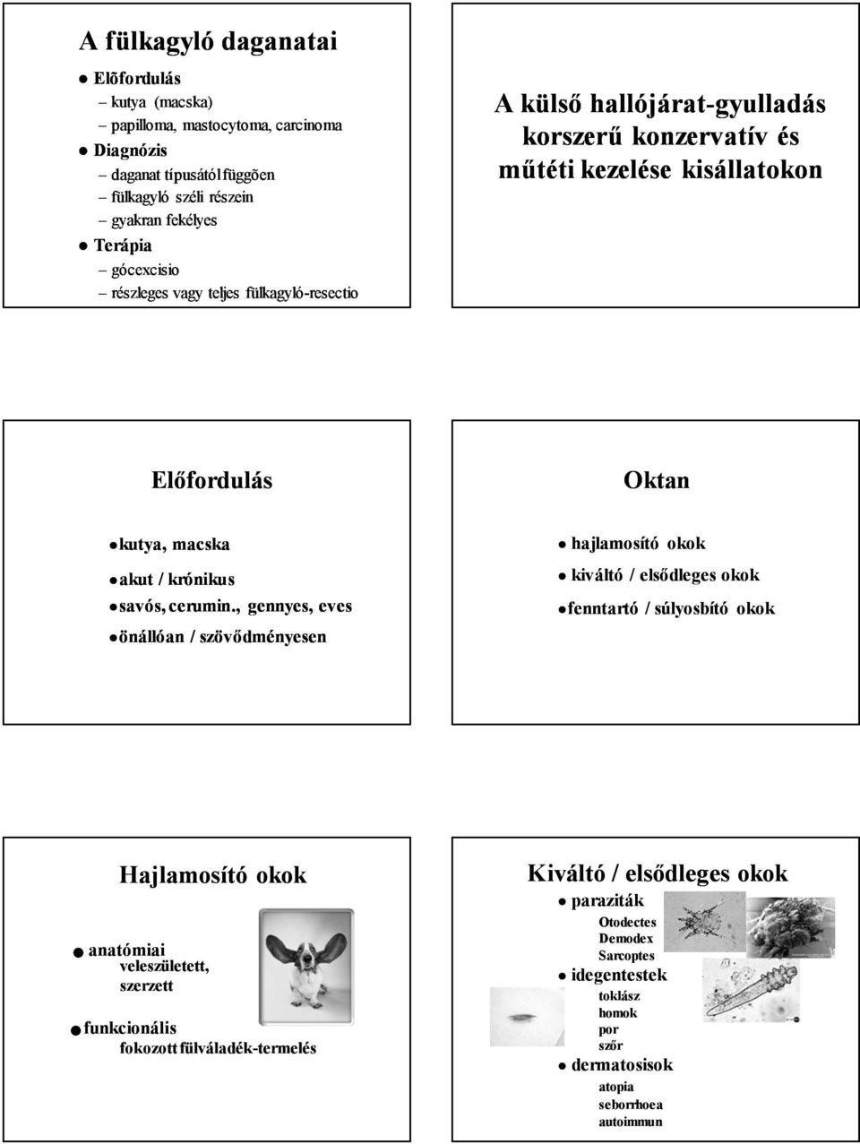a papillómák a paraziták kezelésének jele