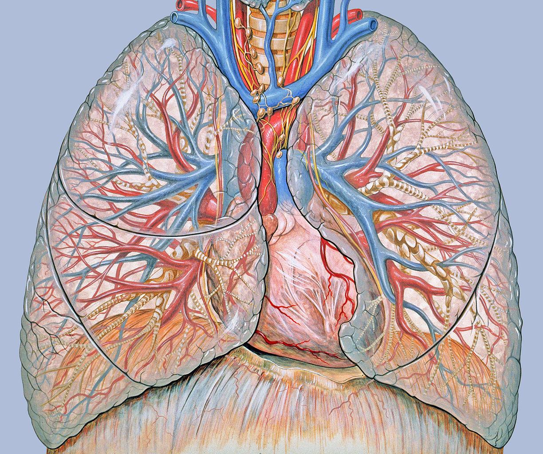 a szarkóma rák átterjedt a tüdőbe