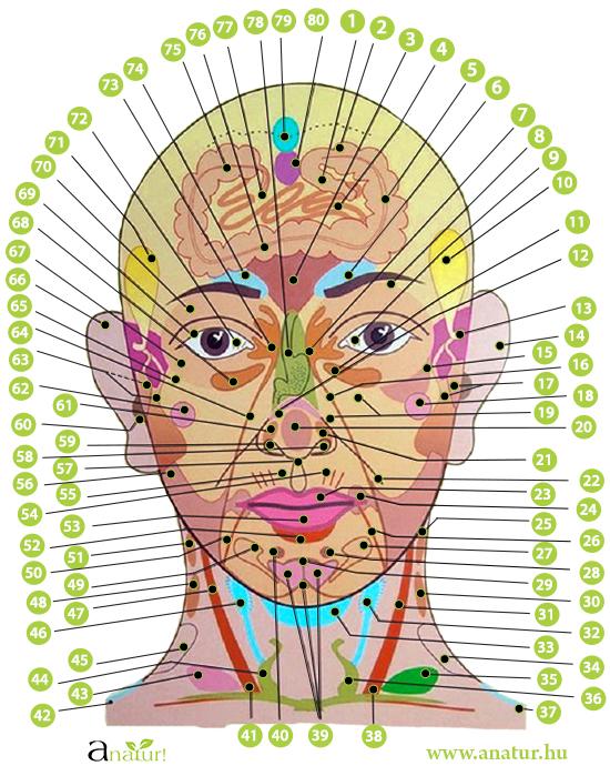 arcparazita gyógyszer