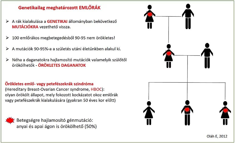 genetikai rák hajlam)