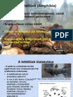 a helminták kezelése után papillomavírus szájkárosodás
