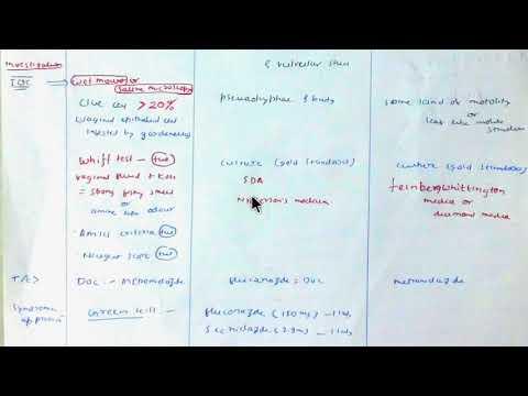Klinikai ajánlások a helmintus inváziójára. Milyen antihelmintikus gyógyszereket jobb venni