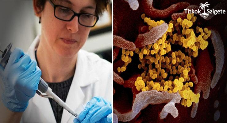 az emberi papillomavírust nőknél kezelik gyomorrák ellátási terv
