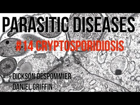 a giardia és a cryptosporidium kezelése