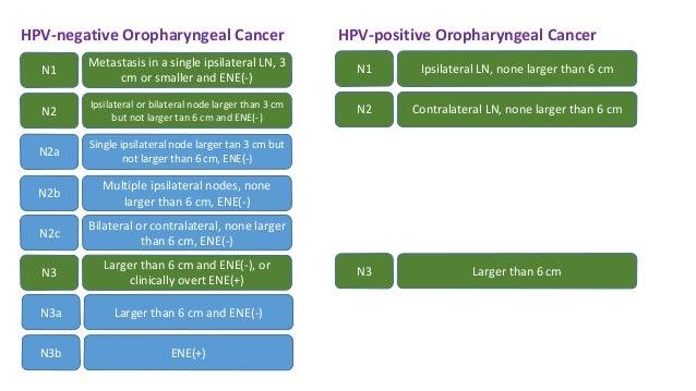 A méhnyakrák - Szülész-Nőgyógyász Budapest szívében, A hpv enyhe diszpláziát okoz