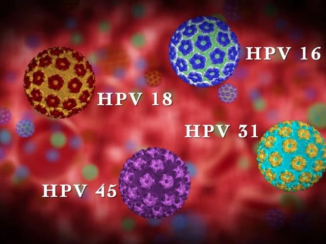 humán papillomavírus hpv molekuláris diagnosztika