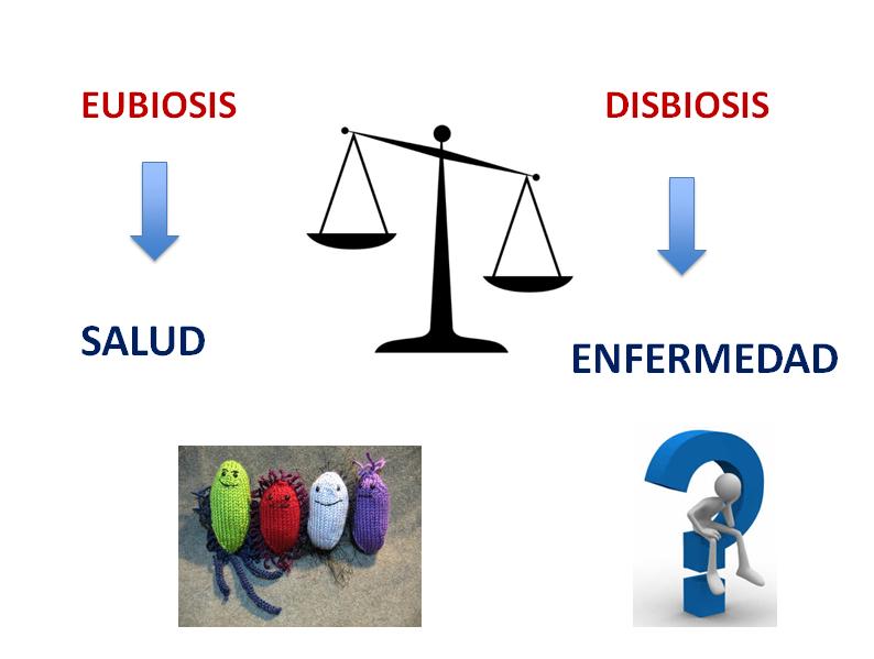 dysbiosis definíció a láb condyloma
