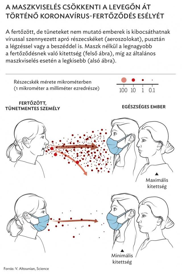 légzési papillomatosis tudományos cikkek