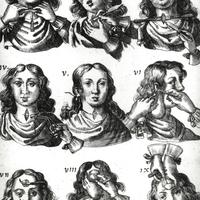 hpv szerotípusok fej- és nyaki rákban papillon zeugma beleki pulykában