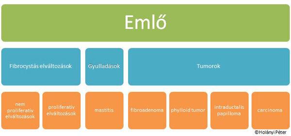 papillomatosis és rosszindulatú daganat