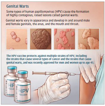 hpv tedavisi var m d r rák genetikai tanácsadó brosúra