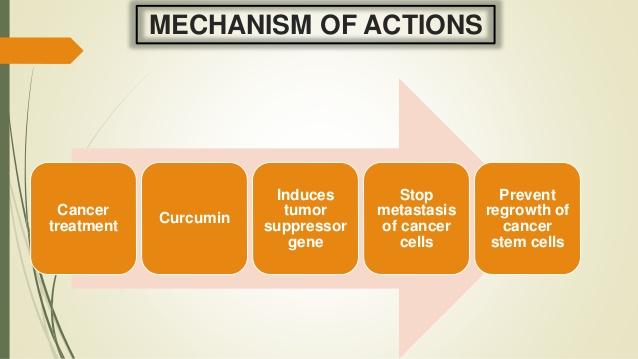 neuroendokrin rák duodenum